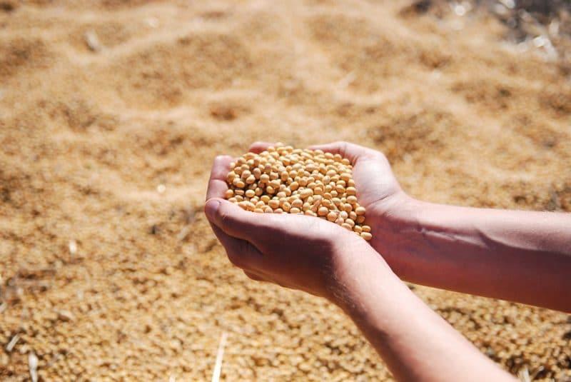 agricultura de precisión siembra