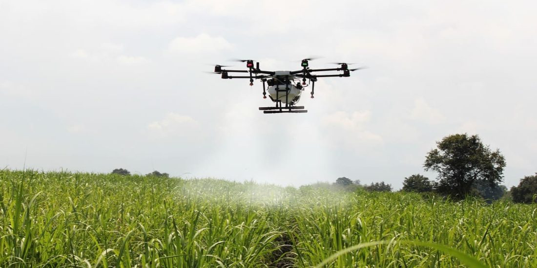 Digital transformation in the agricultural sector: drone technology